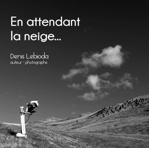 En attendant la neige - Photographies - Denis Lebioda