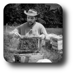 Apiculture - Rucher des Noisetiers - Chabottes (05) - Photo Denis Lebioda